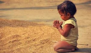 what is meaning of gratitude